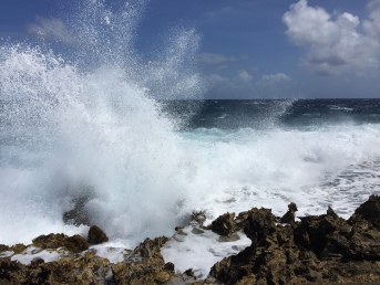 Brandung Aruba